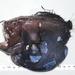Caulophryne polynema - Photo (c) Gonzalo Mucientes Sandoval, μερικά δικαιώματα διατηρούνται (CC BY-NC-SA)