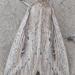 Leucania amygdalina - Photo (c) btk, algunos derechos reservados (CC BY-ND)