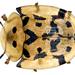 Aspidimorpha deusta - Photo (c) Udo Schmidt, osa oikeuksista pidätetään (CC BY-SA)