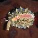 Hespererato vitellina - Photo (c) Alison Young, algunos derechos reservados (CC BY-NC)