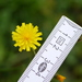 Smooth Hawksbeard - Photo (c) Wolfgang Jauch, some rights reserved (CC BY-SA)