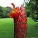 Costus pulverulentus - Photo (c) Dave Skinner, μερικά δικαιώματα διατηρούνται (CC BY-NC)