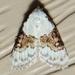 Sharp-blotched Nola Moth - Photo (c) Royal Tyler, some rights reserved (CC BY-NC-SA)