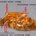 Acentrella - Photo (c) tortes, algunos derechos reservados (CC BY-NC)